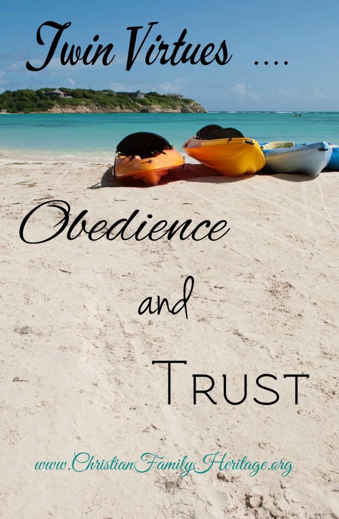 Twin Virtues blog
