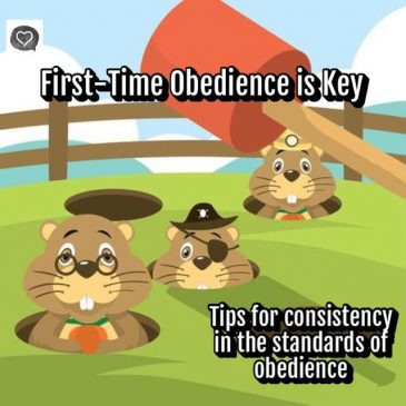 First-Time Obedience is Key