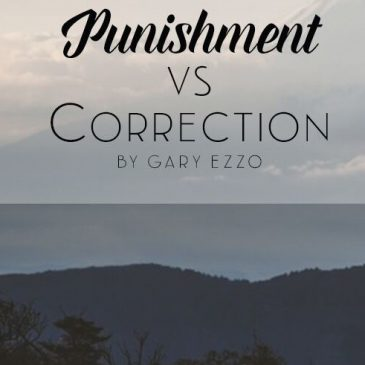 Punishment versus Correction